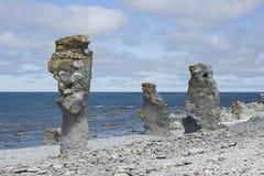 海岸石头 库存照片