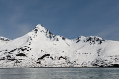 海岸线冰川 库存照片