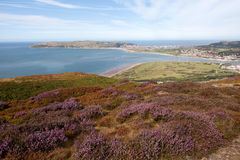海岸线北部威尔士 库存照片