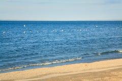 海岸线含沙海运夏天 免版税库存图片