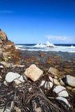 海岸线和高波浪在好望角,南A 免版税库存图片
