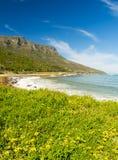 海岸线在南非 免版税图库摄影