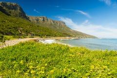 海岸线在南非 库存图片