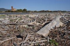 海岸线在托斯卡纳,意大利 免版税图库摄影