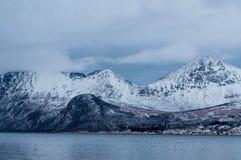 海岸线在Kvaloya村庄在挪威 免版税库存图片