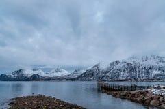 海岸线在Kvaloya村庄在挪威 免版税图库摄影