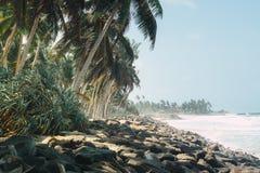 海岸线岩石热带 免版税库存照片