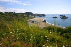 海岸线岩石的俄勒冈 免版税库存图片