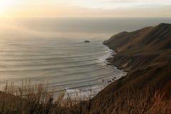 海岸线点婆罗双树 免版税图库摄影