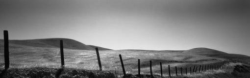 海岸线牧场地 库存图片