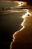 海岸线蒙特里 库存图片
