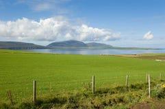 海岸线领域绿色 库存图片