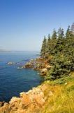 海岸线风景的缅因 免版税图库摄影