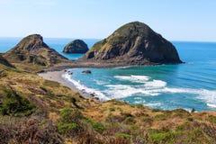 海岸线风景看法在红木国家公园的 免版税库存照片