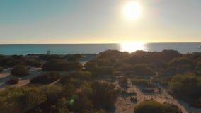 海岸线鸟瞰图与绿色灌木、沙滩和小大厦的反对蓝色清楚的天空在好日子 ?? 影视素材