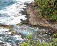 海岸线 库存图片