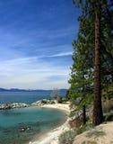 海岸线tahoe 免版税库存图片