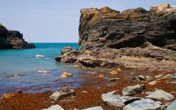 海岸线tintagel 库存照片