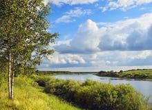海岸绿河 库存图片