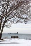 海岸缅因 库存照片