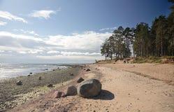海岸芬兰海湾 免版税库存照片