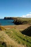 海岸苏格兰人 库存图片