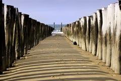 海岸荷兰语walcheren 免版税图库摄影