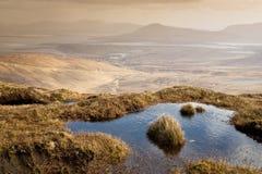 海岸西方的爱尔兰 库存照片