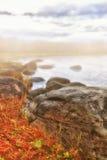 海岸雾横向 库存图片