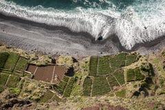 海岸-与绿色领域的海滩顶视图 免版税库存图片