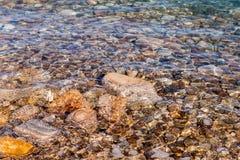 海岸死海 库存图片