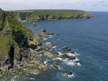 海岸cornwall英国gwithian最近的石头 向量例证