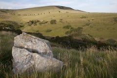 海岸dors小岛侏罗纪最近的purbeck swanage 库存照片