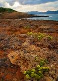 海岸ii岩石 免版税库存图片