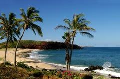 海岸Molokai 免版税库存图片