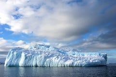 海带鸥和北极燕鸥飞行和坐冰山,南极半岛 库存照片