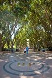 海德公园悉尼 免版税库存照片