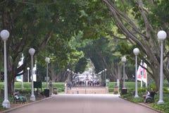 海德公园,中心伦敦英国 免版税库存照片