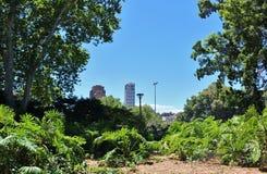 海德公园,悉尼 库存图片