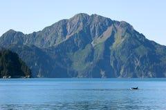 海怪与山的虎鲸在Kenai海湾国家公园阿拉斯加 免版税库存图片