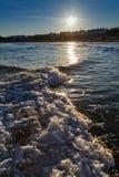 海挥动在海滩 免版税库存图片