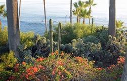 海斯勒公园使庭院,拉古纳海滩,加利福尼亚环境美化 免版税库存照片