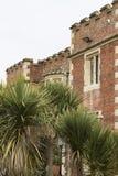 海斯廷斯博物馆和美术画廊在棕榈树后 免版税库存图片