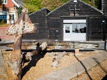 海斯廷斯,东部SUSSEX/UK - 11月06日:船锚f的特写镜头 免版税库存图片