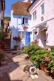 海斯廷斯,英国- 2011年7月31日:五颜六色的房子在海斯廷斯老镇 免版税库存图片