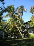 海明威房子基韦斯特岛 库存照片