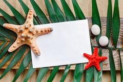 海星、贝壳、说谎在海沙的海石头和棕榈叶 有标签的一个地方 库存照片