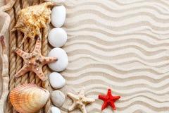 海星、贝壳、说谎在海沙的海石头和棕榈叶 有标签的一个地方 免版税库存照片
