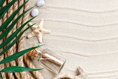 海星、贝壳、说谎在海沙的海石头和棕榈叶 有标签的一个地方 免版税图库摄影