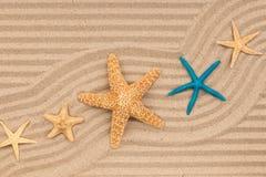 海星和之字形从沙子 图库摄影